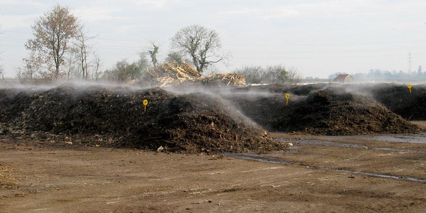 Andains de déchets verts